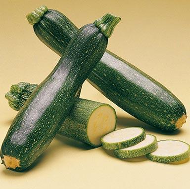Shapeline - Zucchini